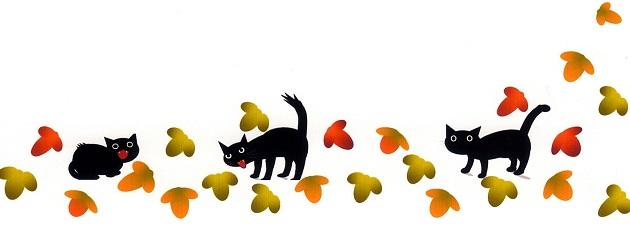 猫と葉っぱ下